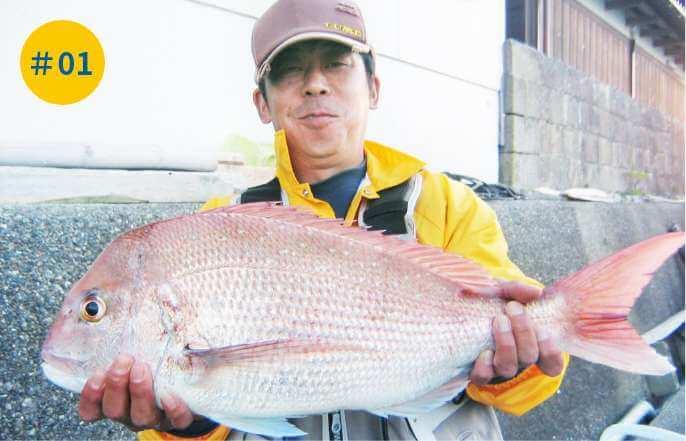 春のノッコミ真鯛釣り大会(毎年3月~5月)