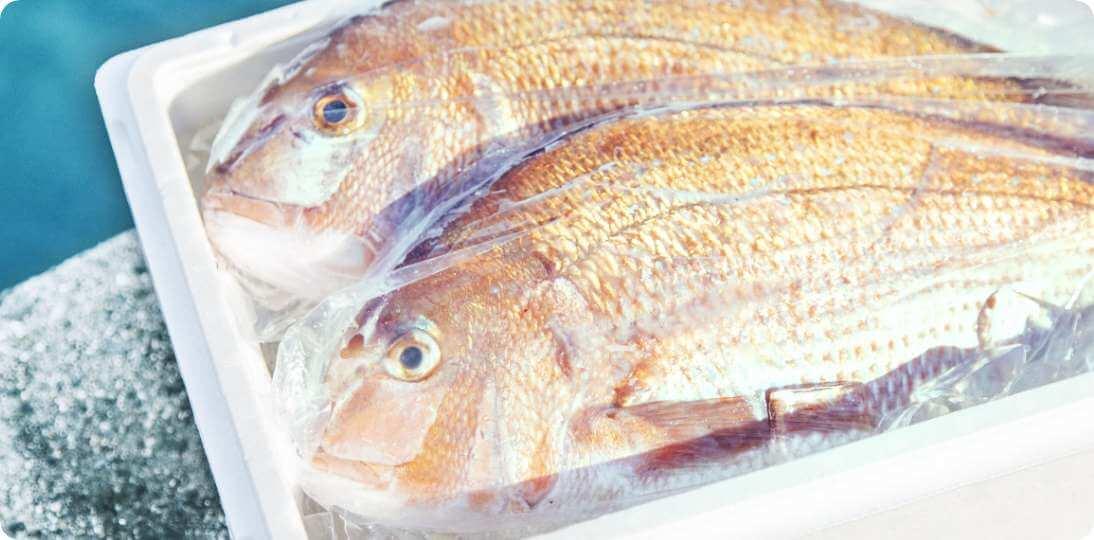 お客様が釣った魚をご自宅へ配送!